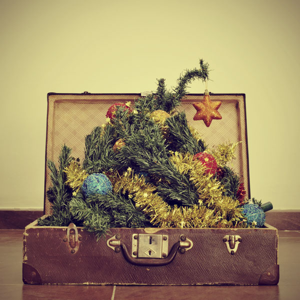 Christmas tree in suitcase