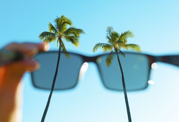 sunglasses looking at palm