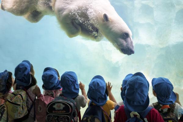 Polar bear and children