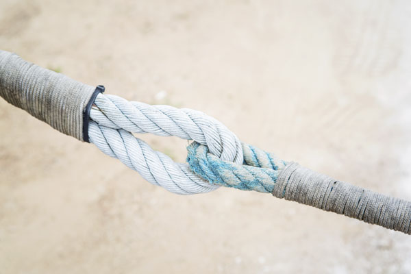Two mooring ropes