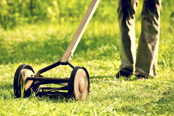 Vintage hand push lawn mower