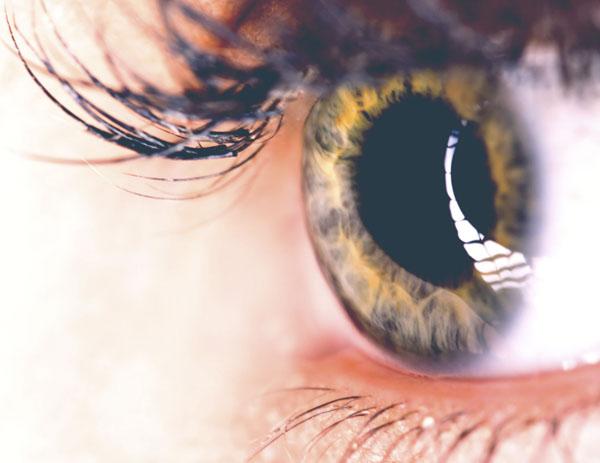 Macro of eye