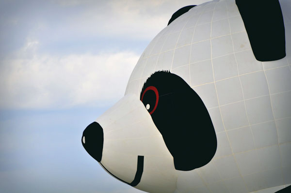 Panda air balloon