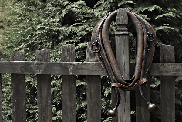 Plow horse collar on fence