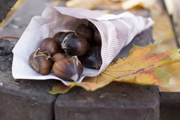 Roasted chestnuts on park bench