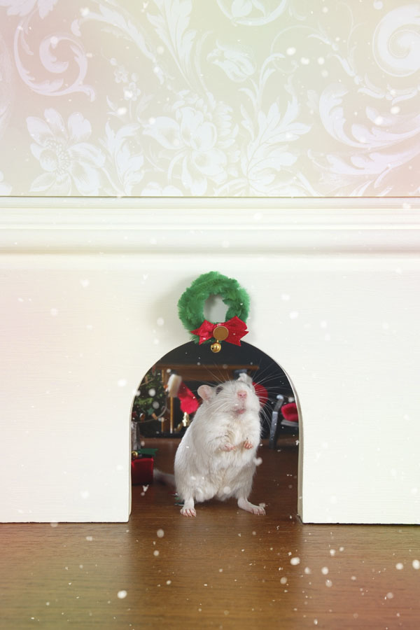 Christmas mouse peeking