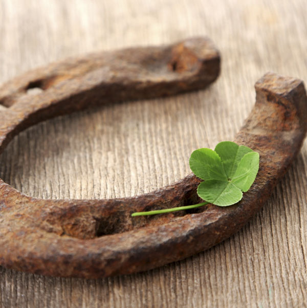 Rusty horseshoe with four leaf clover
