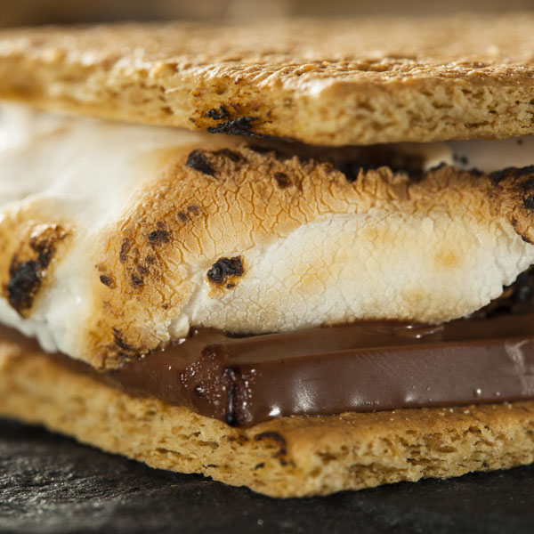 S'more cookie with marshmallow and chocolate