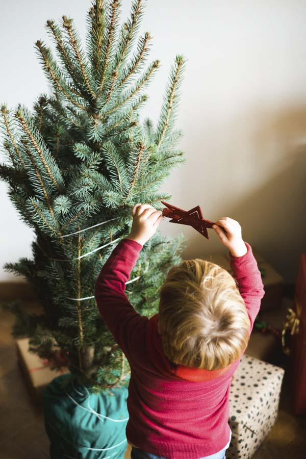 Little boy trying to put a star on Christmas tree