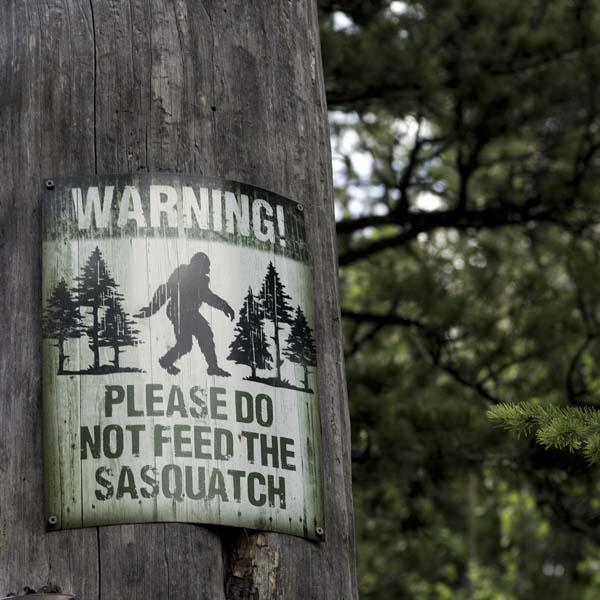 #spiritsays: Ignoring the signs