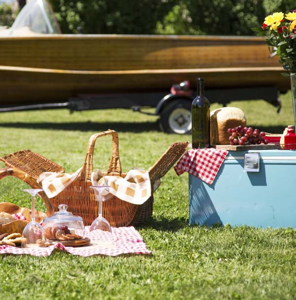 Vintage picnic with ice chest and checkered tablecloth