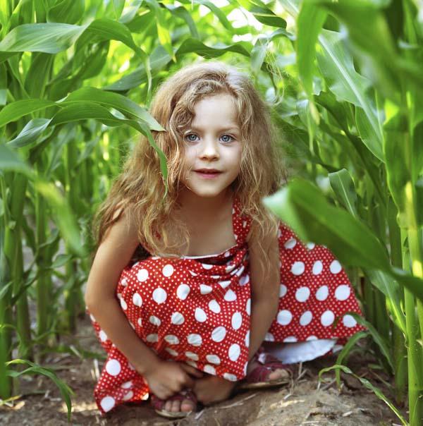 Little girl in red dress hiding in corn field