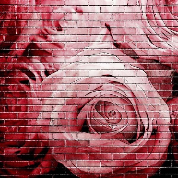 Beautiful painted roses on brick wall