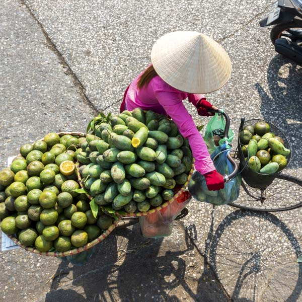 Woman carrying fruits on a bike