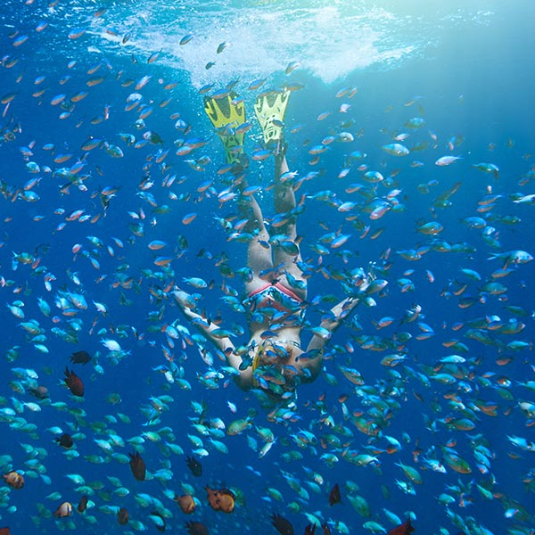 Woman diving in the middle of a shoal of fish