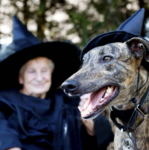 Woman and dog dressed up with black hats