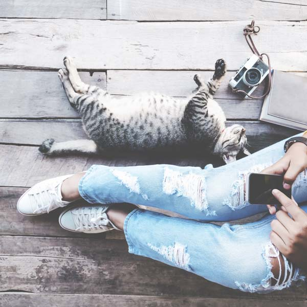 Woman hanging out with cat and phone
