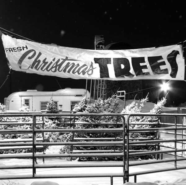 Vintage Christmas tree lot