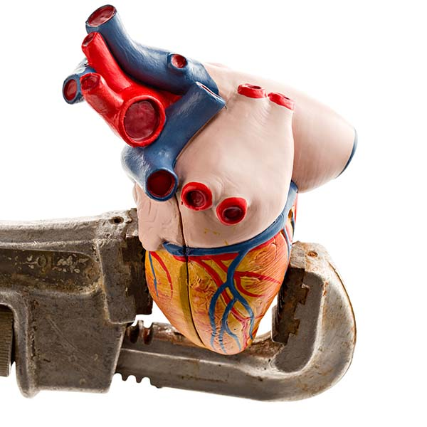 Heart model being squeezed with wrench