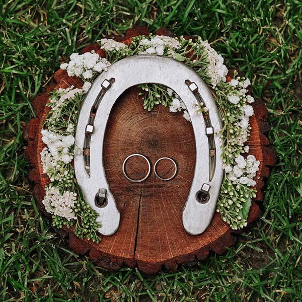 Horseshoe and wedding rings
