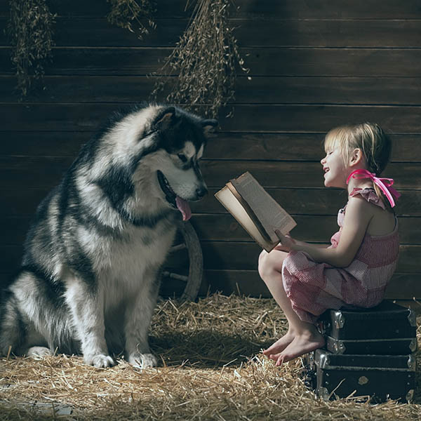 Little girl reading to dog in barn