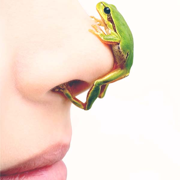 Frog on woman's nose