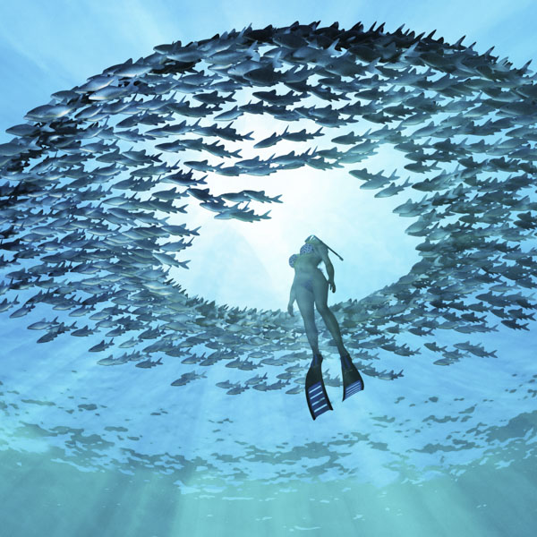 Snorkeling woman surfacing in a school of fish