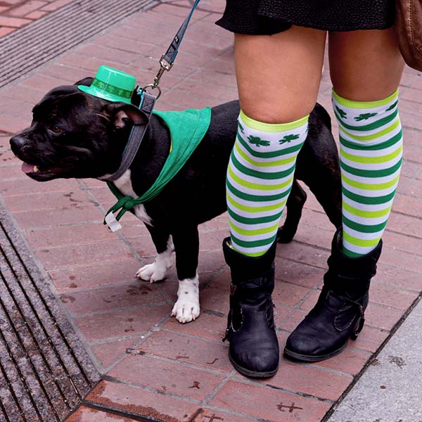 Woman with dog in shamrock socks