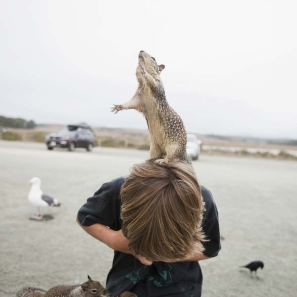 Squirrel on boy's shoulders reaching for treat
