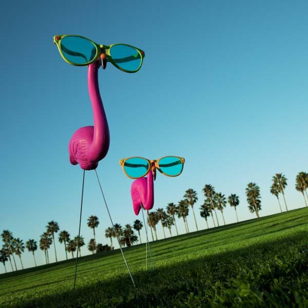 Plastic pink flamingos wearing eyeglasses