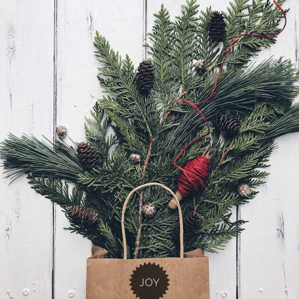 Pine bows and pine cones in joy paper bag