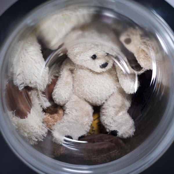#spiritsays: Safe to snuggle