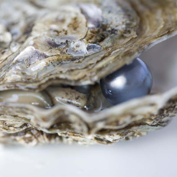 #spiritsays: Beautiful pearl