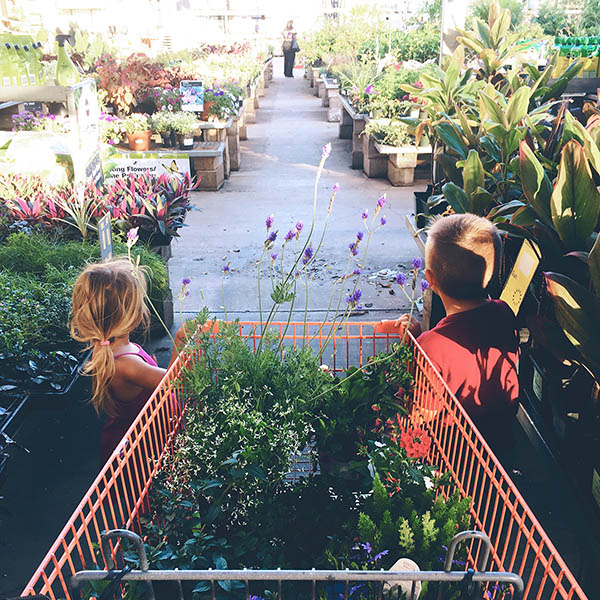 Plant shopping with children