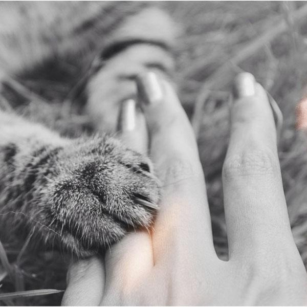 #spiritsays: Magic touch