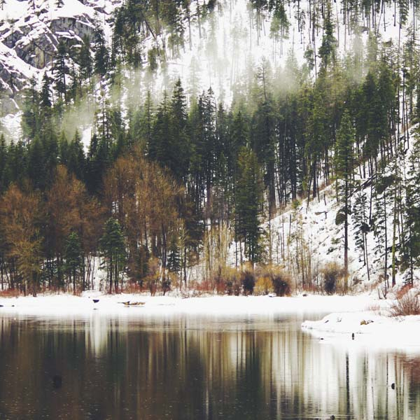 Wintry scene of stillness