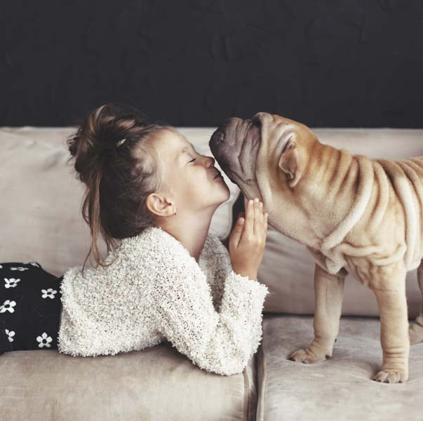 Little girl and wrinkled dog