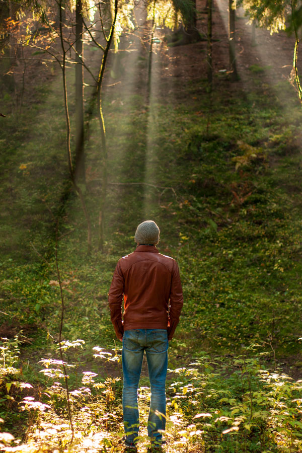 Man looking up at rays of light in the forest