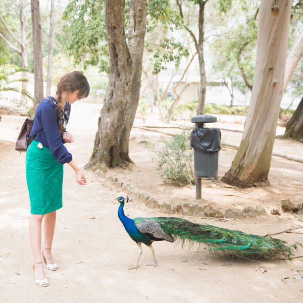 Peacock and woman dressed alike