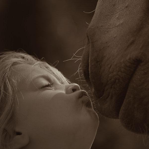 Little girl kissing horse's nose