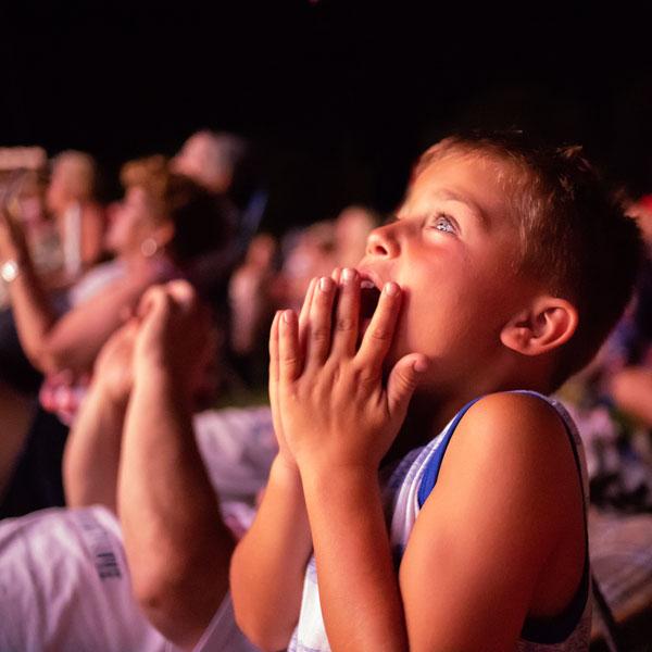 Little boy watching fireworks