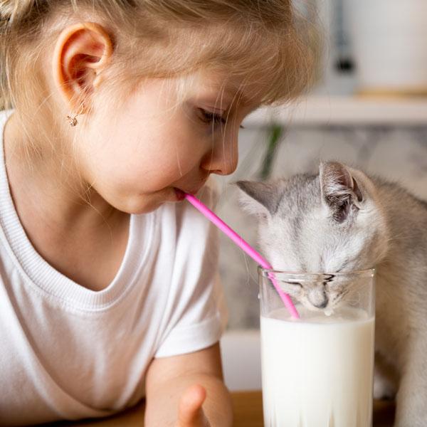 Little girl sharing glass of milk with kitten