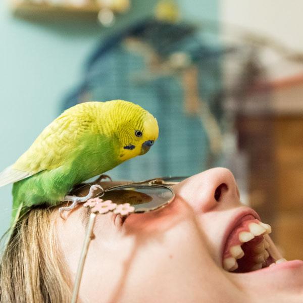 Bird on girl's sunglasses