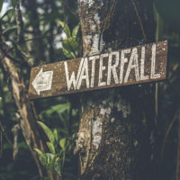Old waterfall sign on tree